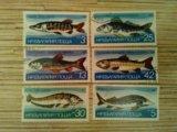 Марки болгарии 1983 рыбы. Фото 1.