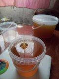 Мёд кипреевый. Фото 2.