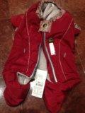 Комбинезон для собаки. Фото 1.