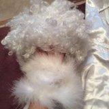 Карнавальный костюм пушинка ангел напрокат. Фото 3.