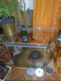 Аквариум 60л. Фото 1.