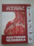 Атлас анатомии. Фото 1.