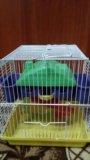 Клетка для джунгарика хомячка. Фото 1.