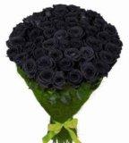 Розы черные,синие,радужные,классика. Фото 4.