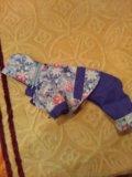 Одежда для собак. Фото 2.