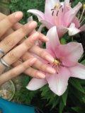 Наращивание ногтей. Фото 1.