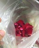 Лепестки роз в пакете. Фото 1.