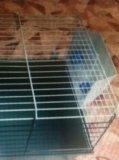 Клетка для шиншиллы или морской свинки. Фото 1.