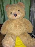 Медведь. Фото 1.