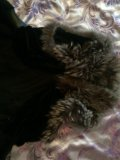 Жилетка. Фото 4.