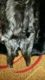 Шуба из кролика чернобурка. Фото 4.