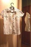 Блузки. Фото 1.