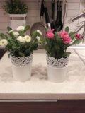 Цветы икеа. Фото 2.
