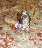 Сувенир собака. Фото 1.