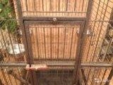 Большая клетка для птиц. Фото 2.