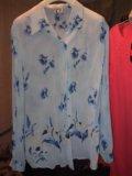 Блузка 48 размер. Фото 1.