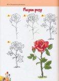 Новый большой учебник по рисованию для детей. Фото 2.