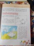 Новый большой учебник по рисованию для детей. Фото 3.