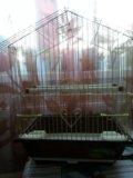 Клетка для птиц. Фото 2.