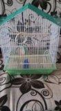 Клетка для попугаев. Фото 1.