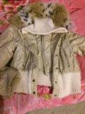 Куртка зимняя с меховым воротником. Фото 1.