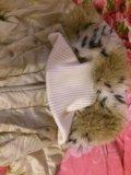 Куртка зимняя с меховым воротником. Фото 3.