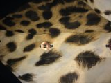 Блузка ferre оригинал. Фото 1.