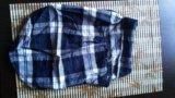 Рубашка для собаки. Фото 1.