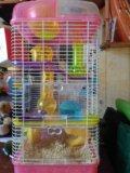 Клетка для хомяка. Фото 4.