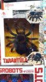 Новый тарантул на пульте управления. Фото 1.