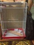 Большая клетка для попугаев. Фото 3.