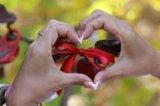 Организую свадьбы и другие торжества. Фото 1.