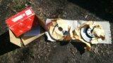 Тормозные диски для opel corsa. Фото 1.