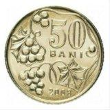 Монета молдавии. Фото 1.
