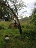 Участок, от 7 до 15 сот., сельхоз (снт или днп). Фото 3.
