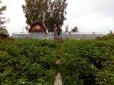 Участок, 700 сот., сельхоз (снт или днп). Фото 3.