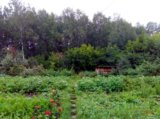 Участок, 700 сот., сельхоз (снт или днп). Фото 18.