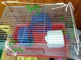 Клетка для хомяков. Фото 1.