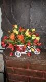 Велосипедик. Фото 1.