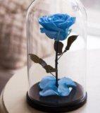 Роза в прозрачной колбе на деревянной подставке. Фото 1.