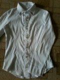 Рубашка школьная б/у. Фото 1.