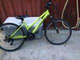 Велосипед торрент. срочно!!!!!. Фото 1.