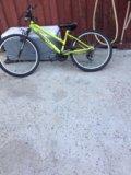 Велосипед торрент. срочно!!!!! торг. Фото 3.