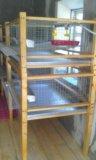 Клетки для перепелов. Фото 1.