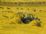 Трактор мтз-50. Фото 2.