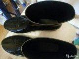 Новые резиновые сапоги. Фото 1.