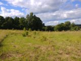 Участок, от 7 до 15 сот., сельхоз (снт или днп). Фото 5.
