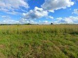 Участок, от 7 до 15 сот., сельхоз (снт или днп). Фото 6.