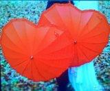 """Аренда. зонт """" красное сердце"""". Фото 3."""