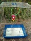 Клетки для птиц. Фото 1.